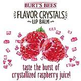 Burt's Bees Flavor Crystals 100% Natural Lip