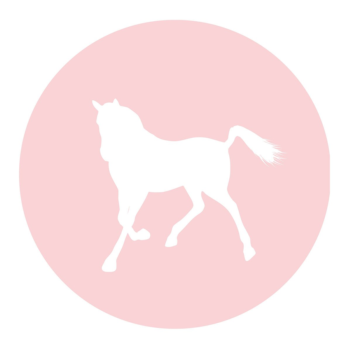 MAGJUCHE Pink Horse Stickers, Farm Animal, Boy Birthday or Baby Shower Party Supply Labels, 2 Inch, 40-Pack