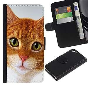 Cymric Cat American Shorthair - la tarjeta de Crédito Slots PU Funda de cuero Monedero caso cubierta de piel Apple iPhone 5 / iPhone 5S