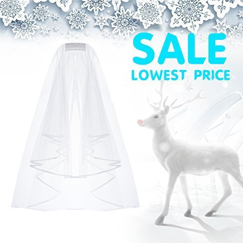 Pretty See Wedding Veil Bridal Tulle Veils with Comb and Lace Ribbon Edge White (White Veil Bridal)