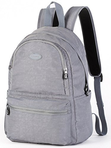 Lily & Drew Nylon Casual Travel Daypack Backpack with Trolley Strap (V2 Grey Medium)