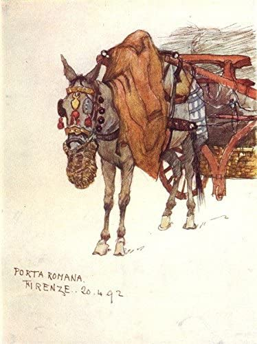Tuscany Toscana: Mule, decorado arnés y cuerda nose-bag, Antique ...