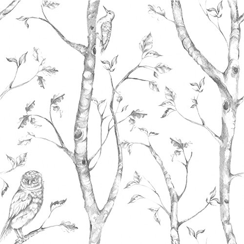 NuWallpaper Wall Pops NU1412 Gray Woods Peel and Stick Peel & Stick Wallpaper ()