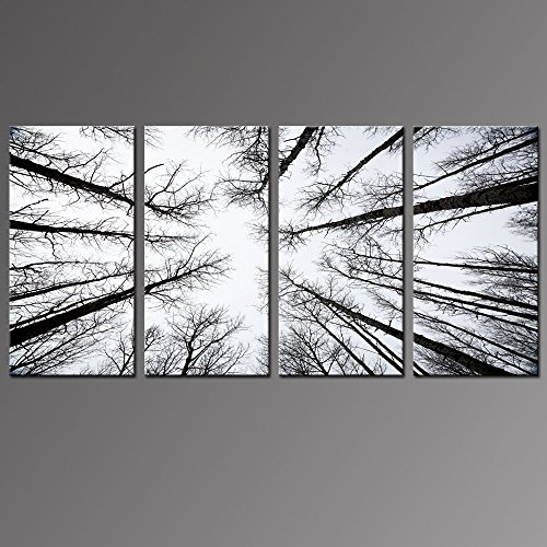 Tree Artwork (Live Art Decor - Black and White Forest Canvas Wall Art Low Angle View Aspen Trees Picture Print on Canvas,San Juan National Forest,4 Panels Framed Artwork for Modern Home Wall Decoration)