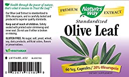 Nature\'s Way Olive Leaf 20% Oleuropein, 60 Vcaps