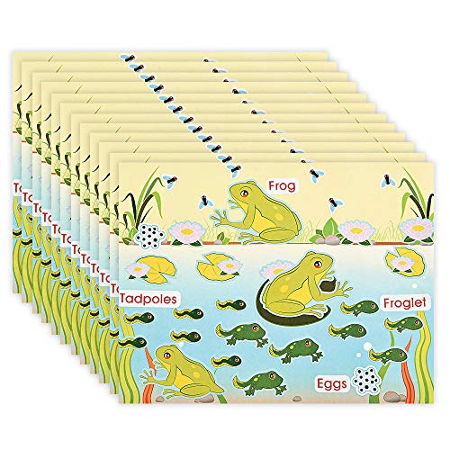 Kicko Make a Frog Sticker - Set of 12 Life Cycle of a Frog Sticker Scene for Birthday Treat, Goody Bags, School Activity, Group Projects, Room Decor, Arts and Crafts