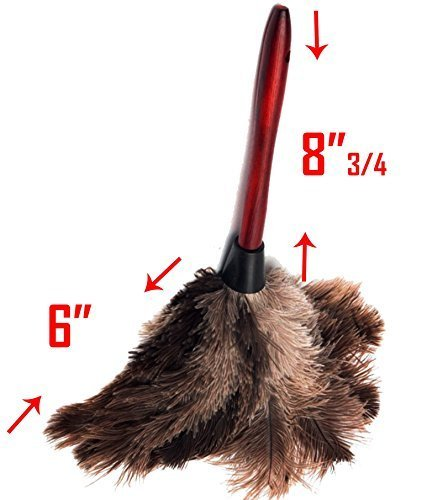 Feather Duster with Red Hardwood Handle / Gray Ostrich Feathers / Hand Duster - 15''