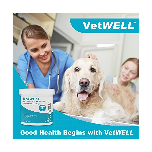 VetWELL Dog Ear Wipes - Otic Cleaning Wipes for Infections and Controlling Yeast, Mites and Odor in Pets - EarWELL 100 Count 4