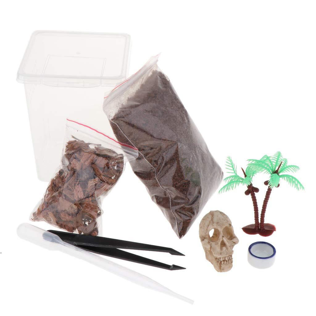 B Blesiya Transparent Plastic Box Insect Reptile Transport Case for Breeding Feeding - M