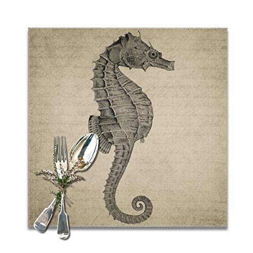 SRuhqu Heat Resistant Placemats Set Of 6 - Seahorse Sea Life Kitchen Placemats For Dining Table 12x12 Inches ()
