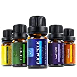 Sol Beauty® Top 6 Essential Oils – Set of 6 100% Pure Therapeutic Grade Aromatherapy Oils – Includes: Tea Tree, Lavender, Peppermint, Eucalyptus, Lemongrass, Orange