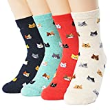 Evei Women's Mini Cats Series Socks 4paris(4color)=1pack