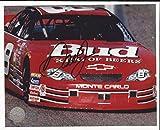 Dale Earnhardt Jr. Autographed Photograph - 8x10 Mounted Memories - Autographed Photos
