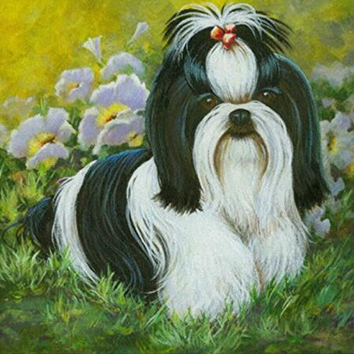 24x24cm Diamond Painting Full Square Shih tzu Cross Stitch Mosaico Rhinestone Painting Animal Diamond Embroidery Resin Dog Home Decor