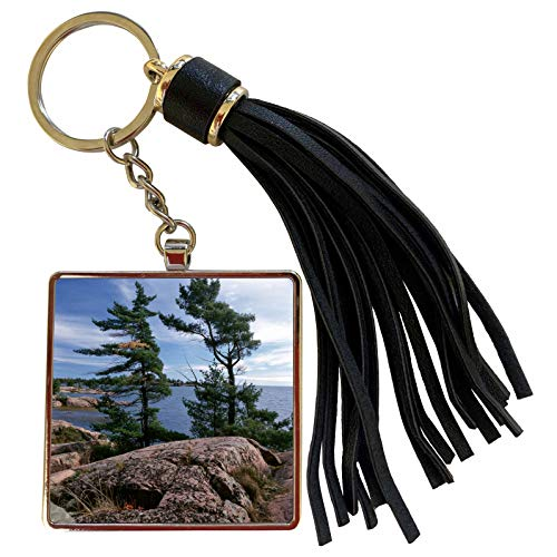 3dRose Danita Delimont - Canada - Canada, Ontario, Killarney Provincial Park - Tassel Key Chain (tkc_226920_1)