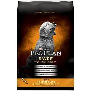 Pro Plan Savor Shredded Blend Chicken & Rice Puppy Food, 6 lbs