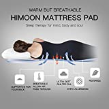 "Pillowtop King Mattress Pad Cover Overfilled Fitted Mattress Topper with Cloud Down Alternative 8-21"" Deep Pocket Hotel Luxury Collection"