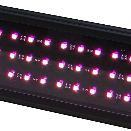 Beamswork LED Plant Pink Aquarium Light Freshwater RGB Chip Roseate (48