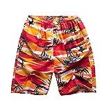 George Jimmy Summer Men Beach Shorts Boardshort Shorts Swim Trunks for Travel, 02