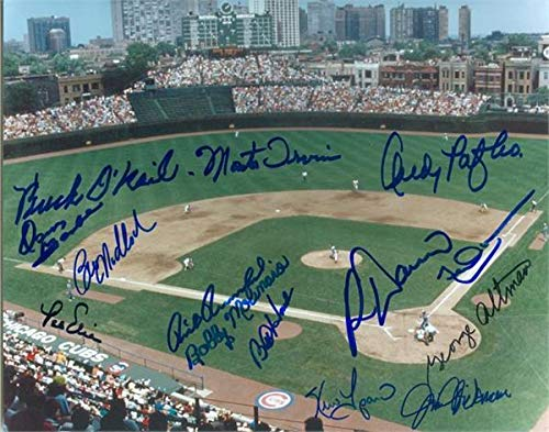 Wrigley Field photo autographed by Chicago Cubs Legends size 8x10 14 signatures #WF1 - Autographed MLB ()