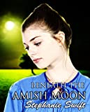 Beneath an Amish Moon: A collection of Amish