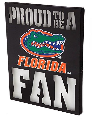 - Team Sports America Florida State Seminoles LED Light Up Metal Wall Art