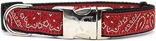 product image for Diva-Dog 'Bandana-Rama' Custom Engraved Dog Collar