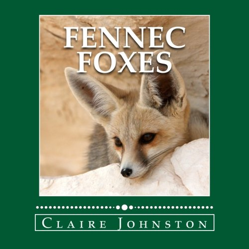 Fennec Foxes: Wily Desert Hunters (the My Favorite Animals series) ebook