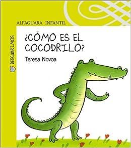 Como Es el Cocodrilo? (Alfaguara Infantil): Amazon.es: Teresa Novoa: Libros