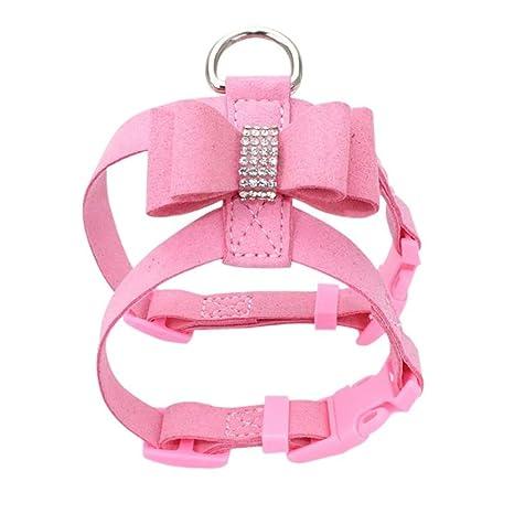 Jelly Pet Collar para Mascota, Collar para Perro, arnés de ...