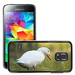 Etui Housse Coque de Protection Cover Rigide pour // M00112641 Pato blanco del pájaro Banco Lago Agua // Samsung Galaxy S5 MINI SM-G800