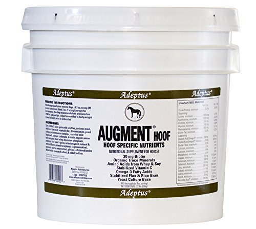 Adeptus Nutrition Augment Hoof EQ Joint Supplements, 22 lb./12 x 12 x 12'' by Adeptus Nutrition