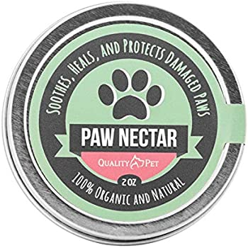Amazon.com : All Natural Dog Paw Balm, Paw and Nose Balm for ...