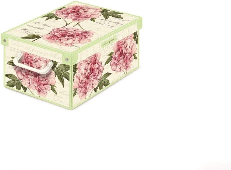 Multicolor Kanguru Collection Caja en Carton Grande