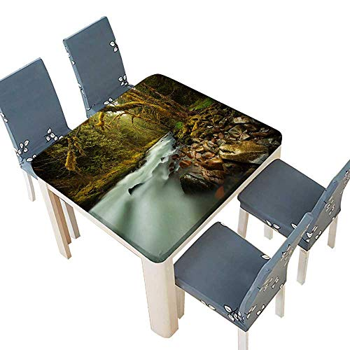 PINAFORE Polyesters Tablecloth The Sound Rushing Water Shattered The Silence The Bushes Home Use, Machine Washable 37.5 x 37.5 INCH (Elastic Edge)