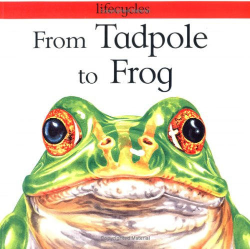 Image result for tadpole to frog book