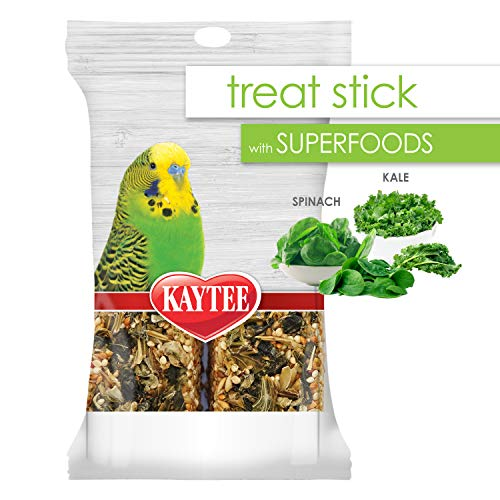 Kaytee Avian Superfood Treat Stick Spinach & Kale 5.5oz