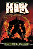 img - for Incredible Hulk Vol. 3: Transfer of Power book / textbook / text book