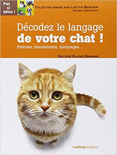 miaulement de chat mp3 gratuit