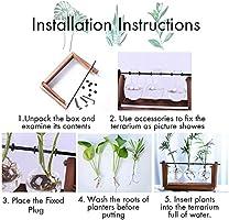 Macetero de cristal de escritorio con soporte de madera maciza retro y soporte giratorio de metal para plantas hidropónicas, hogar, jardín, boda: Amazon.es: Jardín