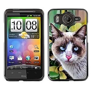 Vortex Accessory Carcasa Protectora Para HTC DESIRE HD - Thai Snowshoe Breed Cat House Clever -