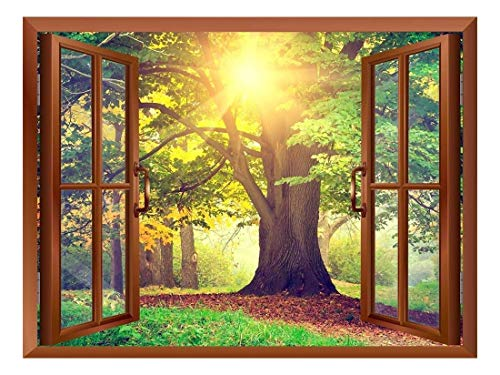 Sunrays Through Beautiful Tree Removable Wall Sticker Wall Mural