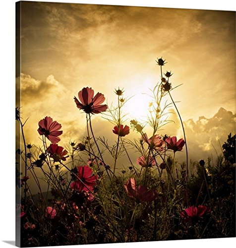 Christian Marcel Premium Thick-Wrap Canvas Wall Art Print entitled Watching The Sun - Christian Canvas