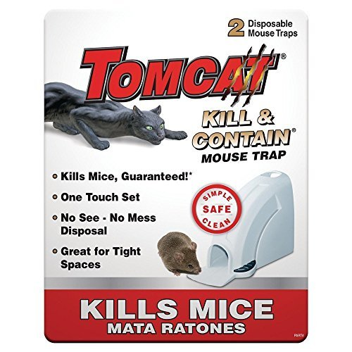 Buy mouse trap on the market