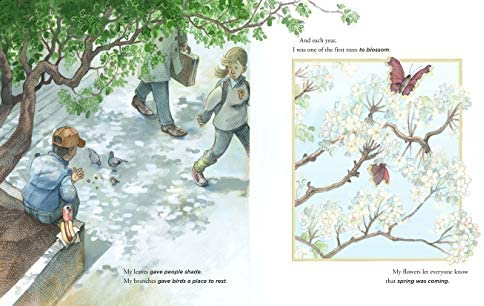 This Very Tree: A Story of 9/11, Resilience, and Regrowth: Rubin, Sean:  9781250788504: Amazon.com: Books