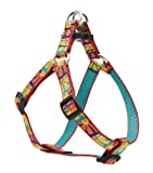 "LupinePet Originals 3/4"" Crazy Daisy 20-30"" Step In Harness for Medium Dogs"