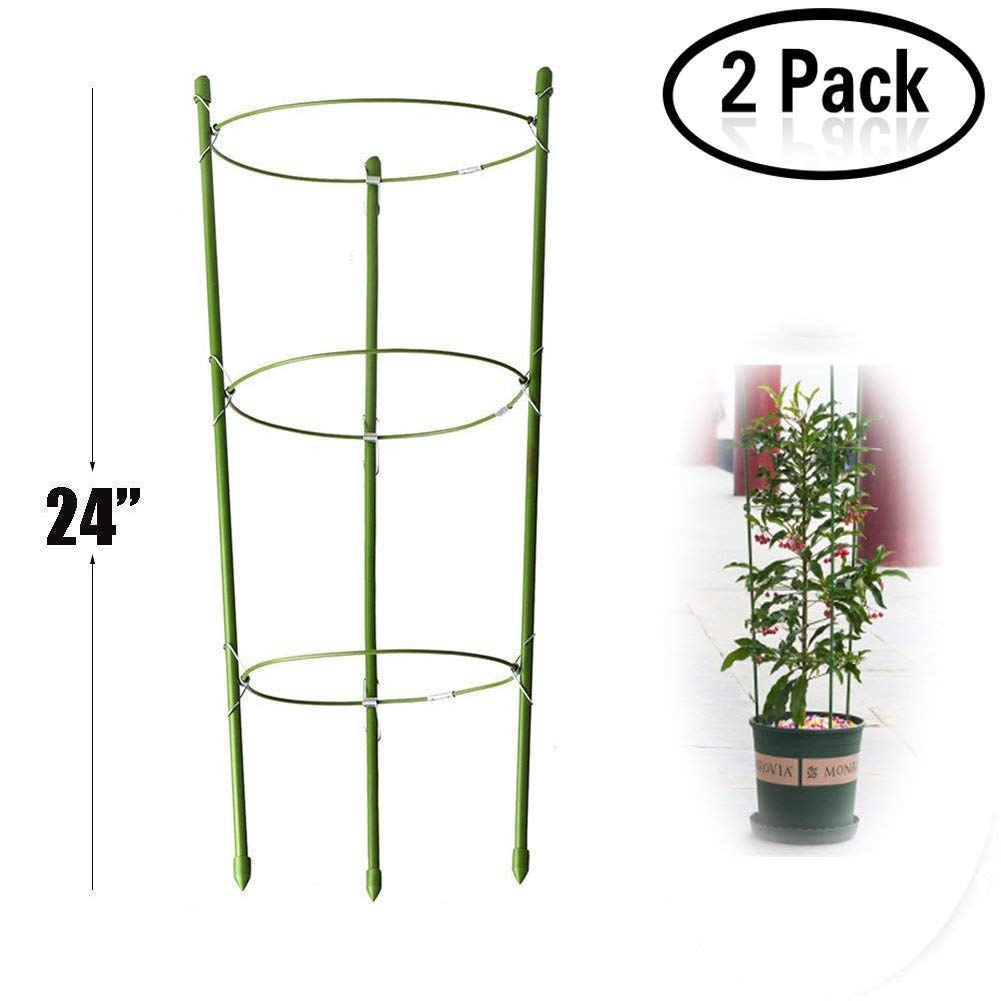 Lobesea Plant Support Ring Garden Trellis Flower Stainless Steel Support Climbing Vegtables&Flowers&Fruit Grow Cage with 3 Adjustable Rings 24''(2PCS)