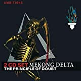 The Principle of Doubt by MEKONG DELTA