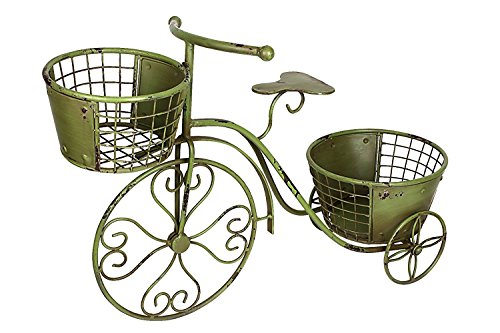 Iron Tricycle (Nostalgic Tricycle Plant Stand Home Garden Decor Iron Flower Pot Cart Holder-Ideal for Home, Garden, Patio - Great Gift for Plant Lovers, Housewarming, Mother's Day (Green))
