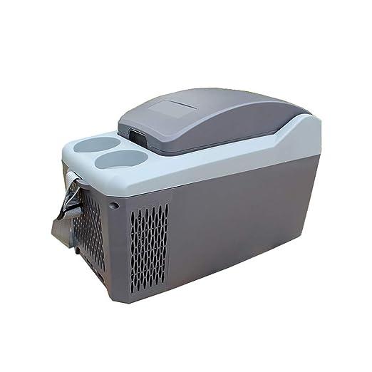 LT&NT Refrigerador de Coche 10 litros portátil Mini Nevera ...